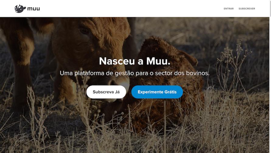 site da Muu usa frases curtas
